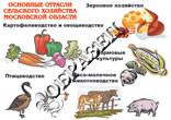 Основные отрасли сельского хозяйста МО плакат
